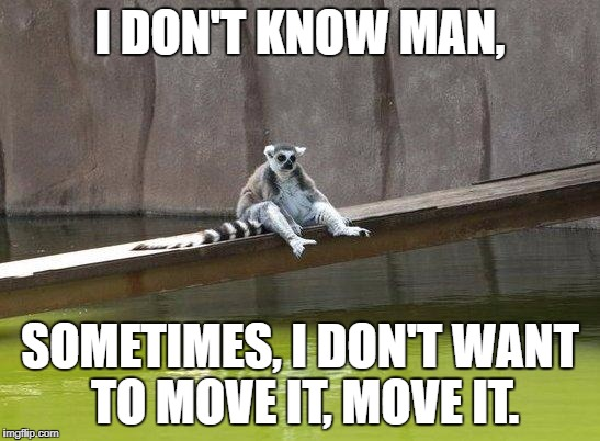Julian ruined it for all of them... | I DON'T KNOW MAN, SOMETIMES, I DON'T WANT TO MOVE IT, MOVE IT. | image tagged in lemur,madagascar,depressed lemur | made w/ Imgflip meme maker