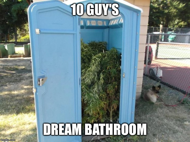 This was a meme comment so I decided to submit it. | 10 GUY'S DREAM BATHROOM | image tagged in dream bathroom,bathrooms,10 guy,weed,funny | made w/ Imgflip meme maker