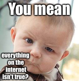 Skeptical Baby Meme | You mean everything on the internet isn't true? | image tagged in memes,skeptical baby | made w/ Imgflip meme maker