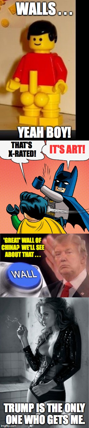Maybe this is what Robert Frost was trying to get at? | WALLS . . . TRUMP IS THE ONLY ONE WHO GETS ME. YEAH BOY! THAT'S X-RATED! IT'S ART! 'GREAT' WALL OF CHINA?  WE'LL SEE ABOUT THAT . . . | image tagged in memes,walls,trump,batman,art,poetry | made w/ Imgflip meme maker