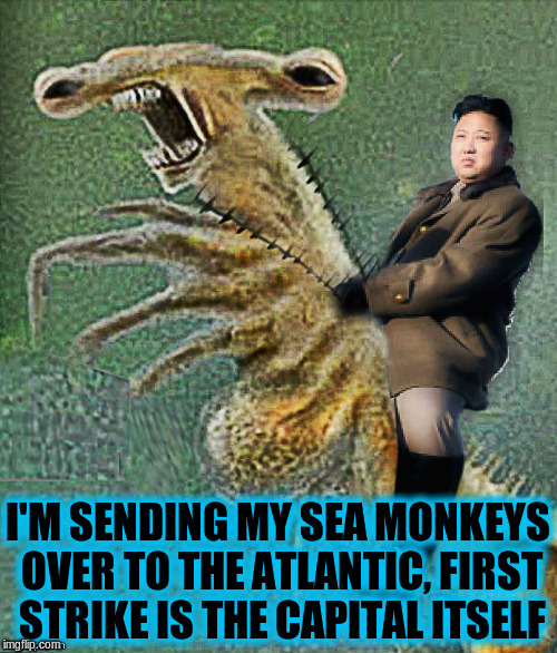 I'M SENDING MY SEA MONKEYS OVER TO THE ATLANTIC, FIRST STRIKE IS THE CAPITAL ITSELF | made w/ Imgflip meme maker