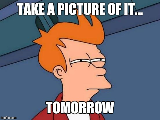 Futurama Fry Meme | TAKE A PICTURE OF IT... TOMORROW | image tagged in memes,futurama fry | made w/ Imgflip meme maker