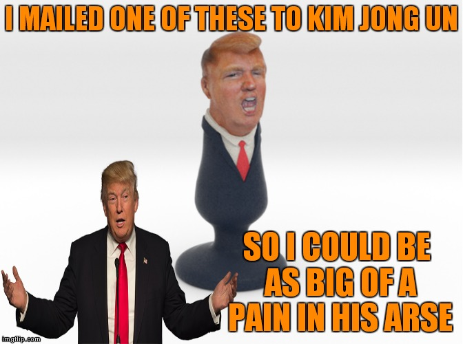 Yup somebody made this... | I MAILED ONE OF THESE TO KIM JONG UN SO I COULD BE AS BIG OF A PAIN IN HIS ARSE | image tagged in donald trump,butt,plug life | made w/ Imgflip meme maker