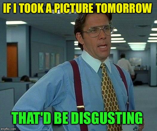 That Would Be Great Meme | IF I TOOK A PICTURE TOMORROW THAT'D BE DISGUSTING | image tagged in memes,that would be great | made w/ Imgflip meme maker