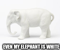 EVEN MY ELEPHANT IS WHITE | made w/ Imgflip meme maker