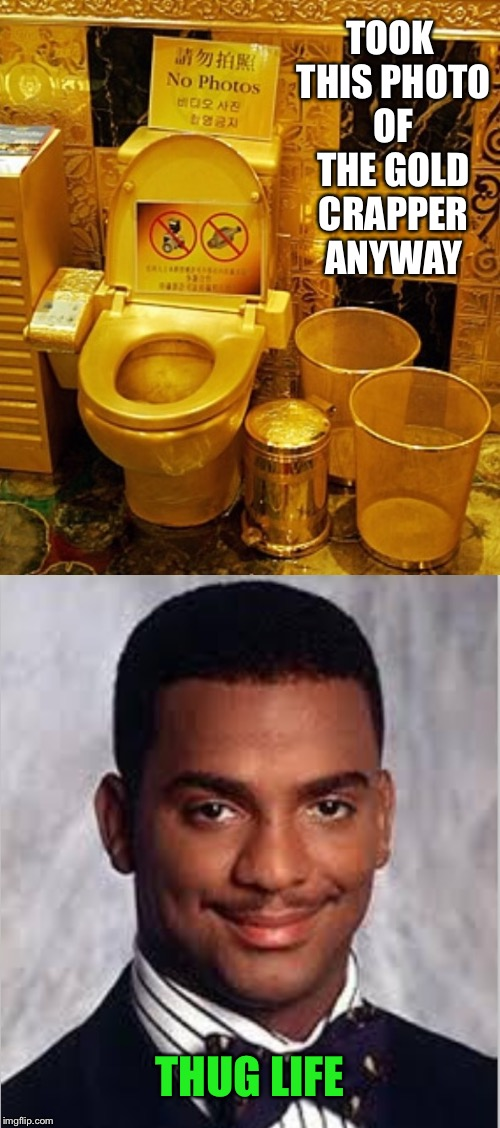 It's Kim Jong Un's personal unit | TOOK THIS PHOTO OF THE GOLD CRAPPER ANYWAY THUG LIFE | image tagged in thug life,carlton banks thug life,toilet,gold,photo | made w/ Imgflip meme maker