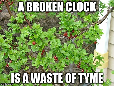A BROKEN CLOCK IS A WASTE OF TYME | made w/ Imgflip meme maker
