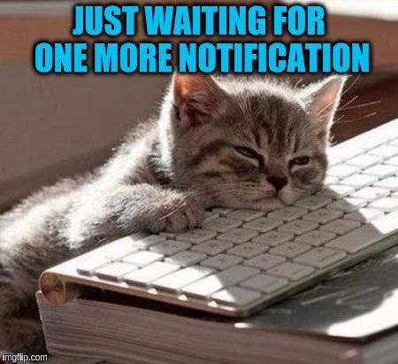 | JUST WAITING FOR ONE MORE NOTIFICATION | image tagged in mosho sleeping,memes,memeing,meme addict,addiction,imgflip users | made w/ Imgflip meme maker