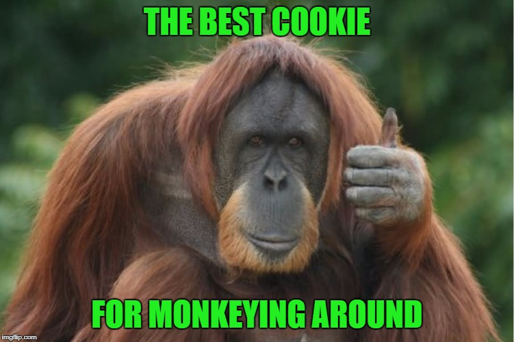 THE BEST COOKIE FOR MONKEYING AROUND | made w/ Imgflip meme maker