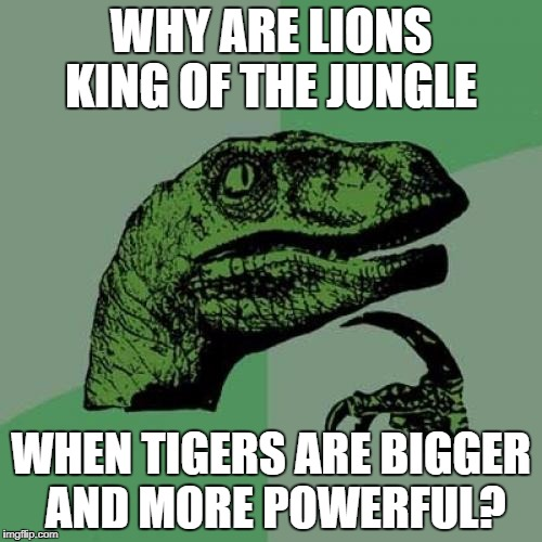 Philosoraptor Meme | WHY ARE LIONS KING OF THE JUNGLE WHEN TIGERS ARE BIGGER AND MORE POWERFUL? | image tagged in memes,philosoraptor | made w/ Imgflip meme maker