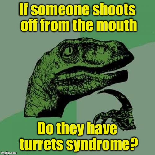 Philosoraptor Meme | If someone shoots off from the mouth Do they have turrets syndrome? | image tagged in memes,philosoraptor,shooting,mouth,bad pun | made w/ Imgflip meme maker