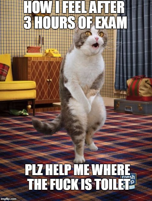 Gotta Go Cat Meme | HOW I FEEL AFTER 3 HOURS OF EXAM PLZ HELP ME WHERE THE F**K IS TOILET | image tagged in memes,gotta go cat | made w/ Imgflip meme maker