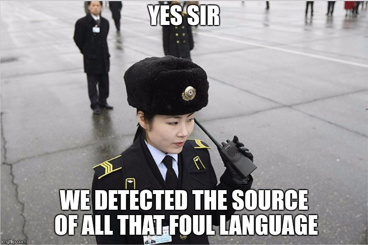 north korea | YES SIR WE DETECTED THE SOURCE OF ALL THAT FOUL LANGUAGE | image tagged in north korea | made w/ Imgflip meme maker