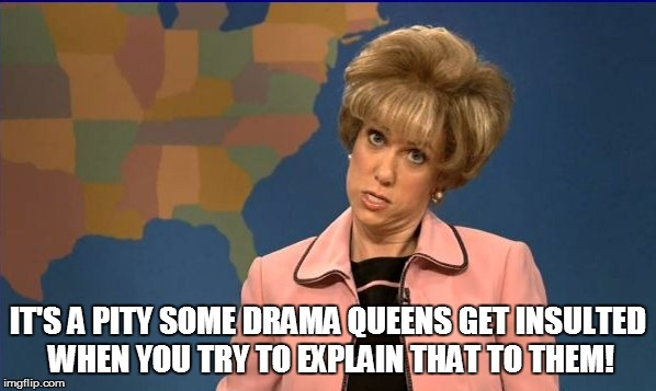 IT'S A PITY SOME DRAMA QUEENS GET INSULTED WHEN YOU TRY TO EXPLAIN THAT TO THEM! | made w/ Imgflip meme maker