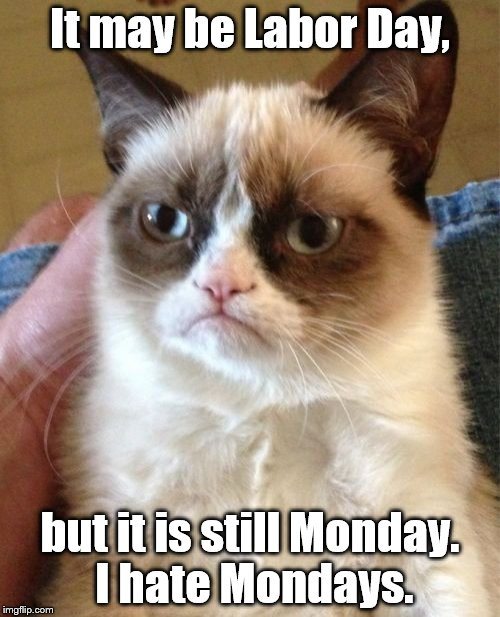 Grumpy Cat Meme | It may be Labor Day, but it is still Monday. I hate Mondays. | image tagged in memes,grumpy cat | made w/ Imgflip meme maker