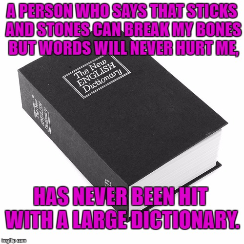 A PERSON WHO SAYS THAT STICKS AND STONES CAN BREAK MY BONES BUT WORDS WILL NEVER HURT ME, HAS NEVER BEEN HIT WITH A LARGE DICTIONARY. | image tagged in dictionary,memes,funny,funny memes,words,sticks and stones | made w/ Imgflip meme maker
