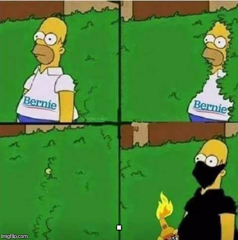Isn't it obvious who they are? | . | image tagged in dank memes,homer simpson in bush - large,make america great again,bernie sanders,antifa | made w/ Imgflip meme maker