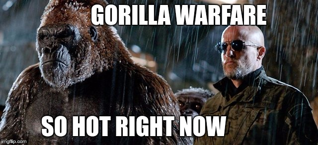 GORILLA WARFARE SO HOT RIGHT NOW | made w/ Imgflip meme maker