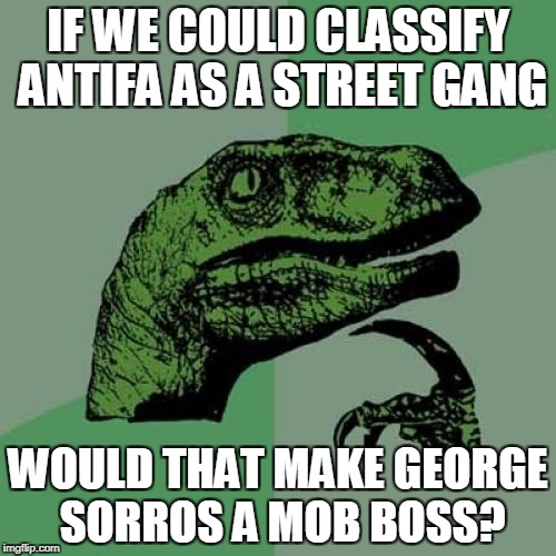 Philosoraptor | IF WE COULD CLASSIFY ANTIFA AS A STREET GANG WOULD THAT MAKE GEORGE SORROS A MOB BOSS? | image tagged in memes,philosoraptor | made w/ Imgflip meme maker