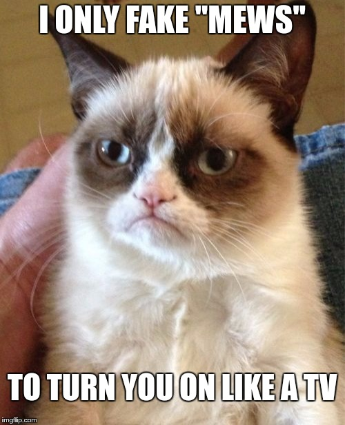 "Grumpy Cat Meme | I ONLY FAKE ""MEWS"" TO TURN YOU ON LIKE A TV 