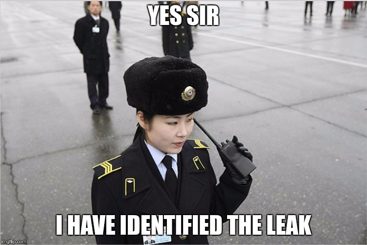 north korea | YES SIR I HAVE IDENTIFIED THE LEAK | image tagged in north korea | made w/ Imgflip meme maker