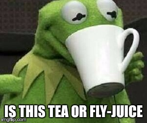 It definitely ain't coffee! | IS THIS TEA OR FLY-JUICE | image tagged in memes,funny,coffee,tea,fly,juice | made w/ Imgflip meme maker