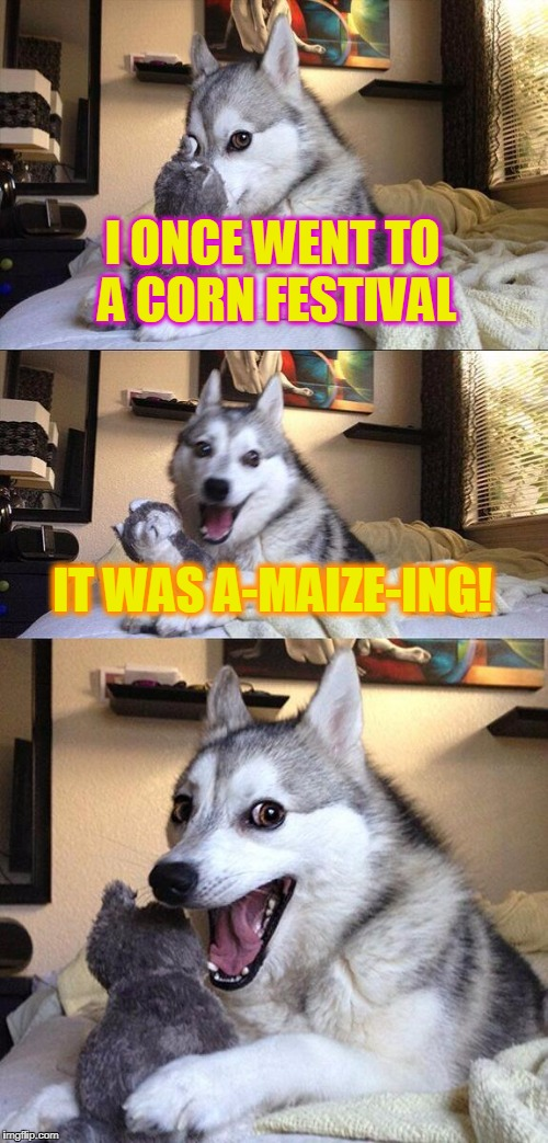 My mom came up with this one! | I ONCE WENT TO A CORN FESTIVAL IT WAS A-MAIZE-ING! | image tagged in memes,bad pun dog | made w/ Imgflip meme maker