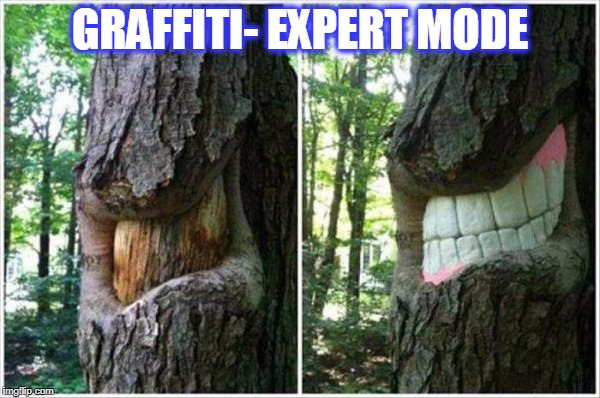 GRAFFITI- EXPERT MODE | image tagged in anus/smile | made w/ Imgflip meme maker