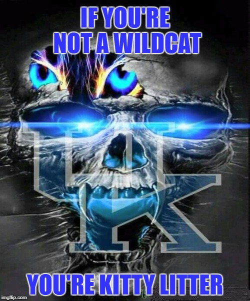 Kentucky Wildcats | IF YOU'RE NOT A WILDCAT YOU'RE KITTY LITTER | image tagged in uk wildcats,kentucky wildcats,ncaa,don't be kitty litter | made w/ Imgflip meme maker