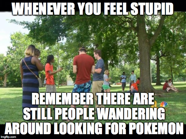 I thought this was a flash in the pan, until I saw an adult doing it in Costco | WHENEVER YOU FEEL STUPID REMEMBER THERE ARE STILL PEOPLE WANDERING AROUND LOOKING FOR POKEMON | image tagged in pokemon,stupid | made w/ Imgflip meme maker