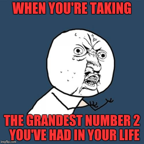 Just dont get hemorrhoids! | WHEN YOU'RE TAKING THE GRANDEST NUMBER 2  YOU'VE HAD IN YOUR LIFE | image tagged in memes,y u no,funny,poop | made w/ Imgflip meme maker