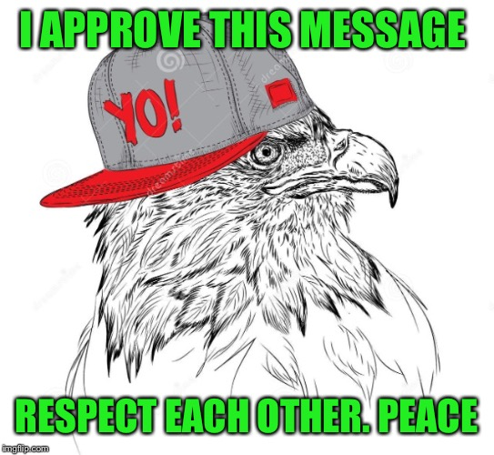 I APPROVE THIS MESSAGE RESPECT EACH OTHER. PEACE | made w/ Imgflip meme maker