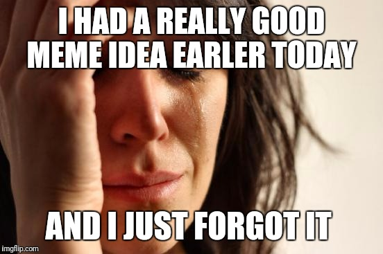 First World Problems Meme | I HAD A REALLY GOOD MEME IDEA EARLER TODAY AND I JUST FORGOT IT | image tagged in memes,first world problems | made w/ Imgflip meme maker