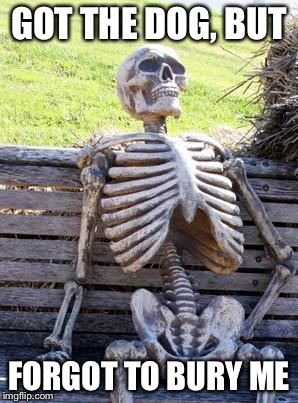 Waiting Skeleton Meme | GOT THE DOG, BUT FORGOT TO BURY ME | image tagged in memes,waiting skeleton | made w/ Imgflip meme maker
