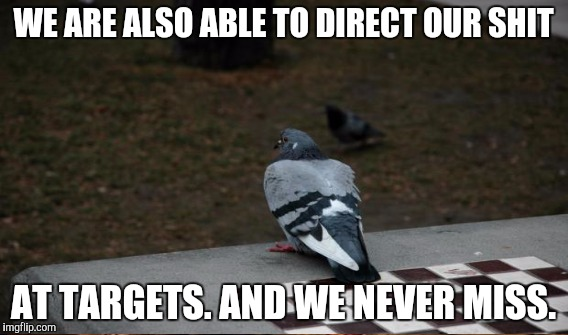 WE ARE ALSO ABLE TO DIRECT OUR SHIT AT TARGETS. AND WE NEVER MISS. | made w/ Imgflip meme maker