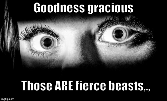 Goodness gracious Those ARE fierce beasts,., | made w/ Imgflip meme maker