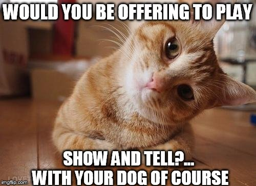WOULD YOU BE OFFERING TO PLAY SHOW AND TELL?... WITH YOUR DOG OF COURSE | made w/ Imgflip meme maker