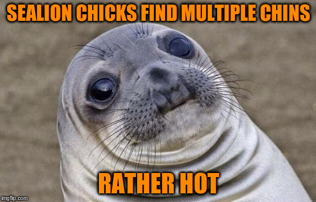Awkward Moment Sealion Meme | SEALION CHICKS FIND MULTIPLE CHINS RATHER HOT | image tagged in memes,awkward moment sealion | made w/ Imgflip meme maker