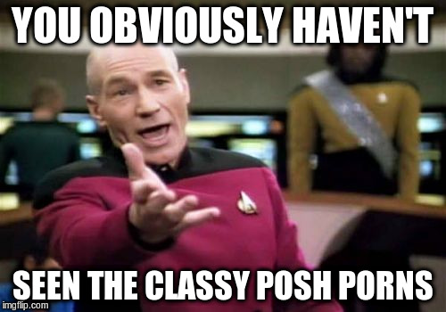Picard Wtf Meme | YOU OBVIOUSLY HAVEN'T SEEN THE CLASSY POSH PORNS | image tagged in memes,picard wtf | made w/ Imgflip meme maker