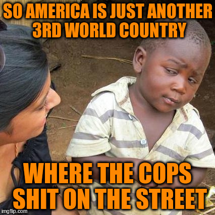 Third World Skeptical Kid Meme | SO AMERICA IS JUST ANOTHER 3RD WORLD COUNTRY WHERE THE COPS SHIT ON THE STREET | image tagged in memes,third world skeptical kid | made w/ Imgflip meme maker