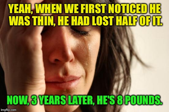 First World Problems Meme | YEAH, WHEN WE FIRST NOTICED HE WAS THIN, HE HAD LOST HALF OF IT. NOW, 3 YEARS LATER, HE'S 8 POUNDS. | image tagged in memes,first world problems | made w/ Imgflip meme maker