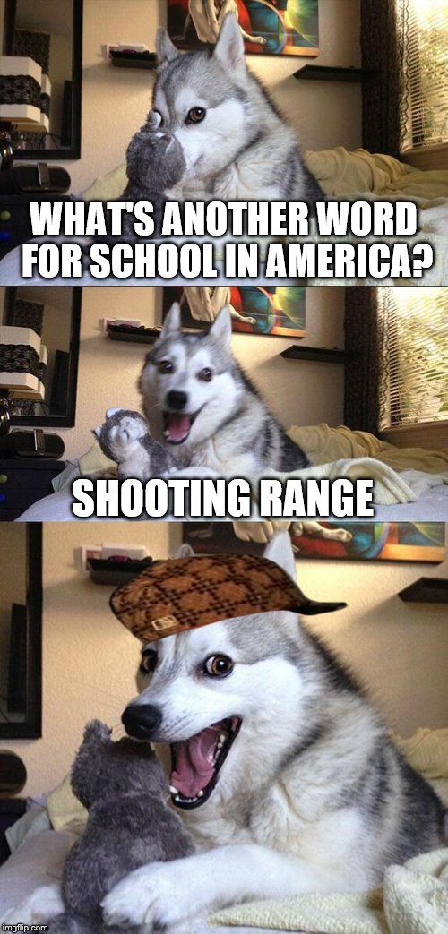 Bad Pun Dog Meme | WHAT'S ANOTHER WORD FOR SCHOOL IN AMERICA? SHOOTING RANGE | image tagged in memes,bad pun dog,scumbag,america,school | made w/ Imgflip meme maker