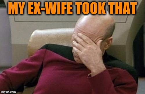Captain Picard Facepalm Meme | MY EX-WIFE TOOK THAT | image tagged in memes,captain picard facepalm | made w/ Imgflip meme maker