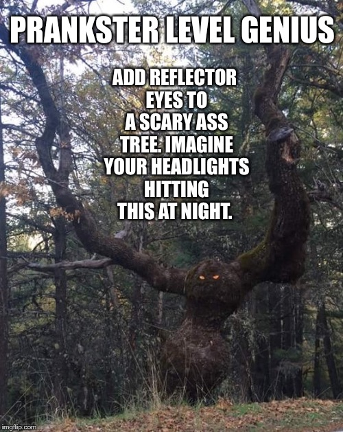 PRANKSTER LEVEL GENIUS ADD REFLECTOR EYES TO A SCARY ASS TREE. IMAGINE YOUR HEADLIGHTS HITTING THIS AT NIGHT. | made w/ Imgflip meme maker