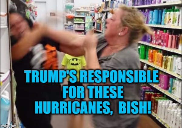 Cat fight | TRUMP'S RESPONSIBLE FOR THESE HURRICANES,  BISH! | image tagged in cat fight | made w/ Imgflip meme maker