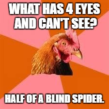 Anti-Joke Chicken | WHAT HAS 4 EYES AND CAN'T SEE? HALF OF A BLIND SPIDER. | image tagged in anti-joke chicken | made w/ Imgflip meme maker