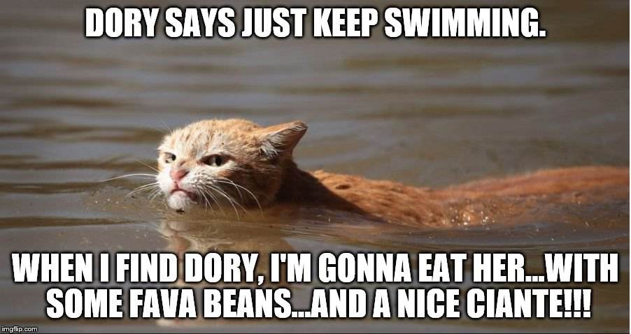 DORY SAYS JUST KEEP SWIMMING. WHEN I FIND DORY, I'M GONNA EAT HER...WITH SOME FAVA BEANS...AND A NICE CIANTE!!! | image tagged in hurricane harvey cat | made w/ Imgflip meme maker