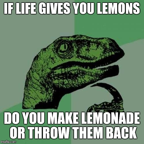Philosoraptor Meme | IF LIFE GIVES YOU LEMONS DO YOU MAKE LEMONADE OR THROW THEM BACK | image tagged in memes,philosoraptor | made w/ Imgflip meme maker