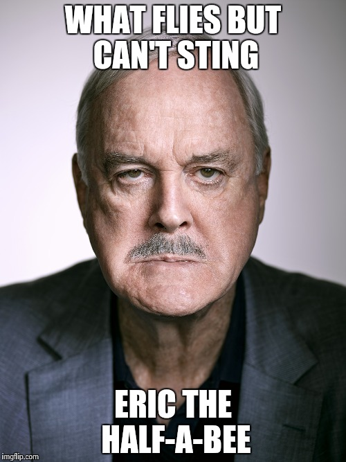 John Cleese | WHAT FLIES BUT CAN'T STING ERIC THE HALF-A-BEE | image tagged in john cleese | made w/ Imgflip meme maker