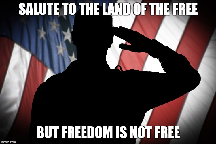 SALUTE TO THE LAND OF THE FREE BUT FREEDOM IS NOT FREE | image tagged in military | made w/ Imgflip meme maker